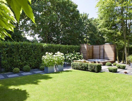 Tanie ogrodzenie  –  dlaczego propagujemy ogrodzenia z żywopłotów